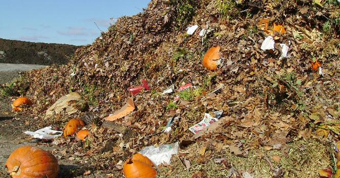 Organic Wastes