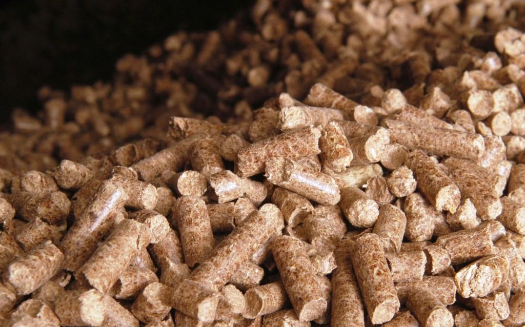 pelletization of biomass