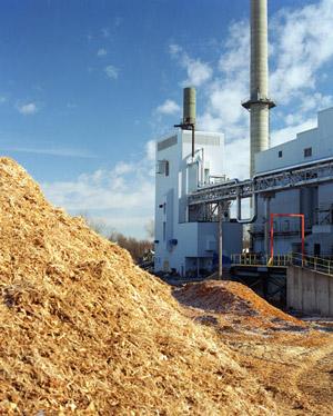 bioenergy conversion