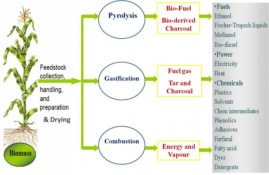 biomass-conversion-technologies