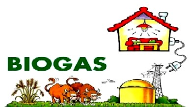 products-from-biogas-plant