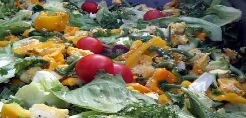 food processing wastes