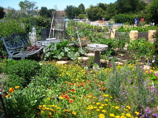honey bee house garden