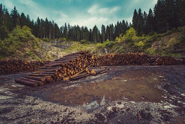 environmental-impacts-globalization