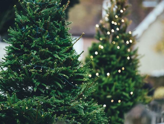 No money but still a nice Christmas