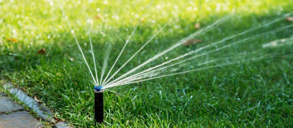 water efficiency garden