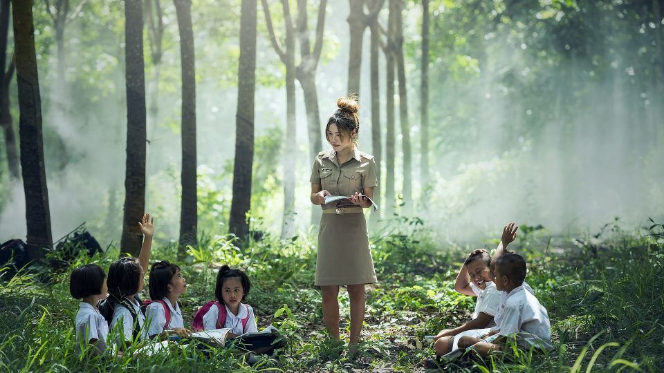 green-school-projects