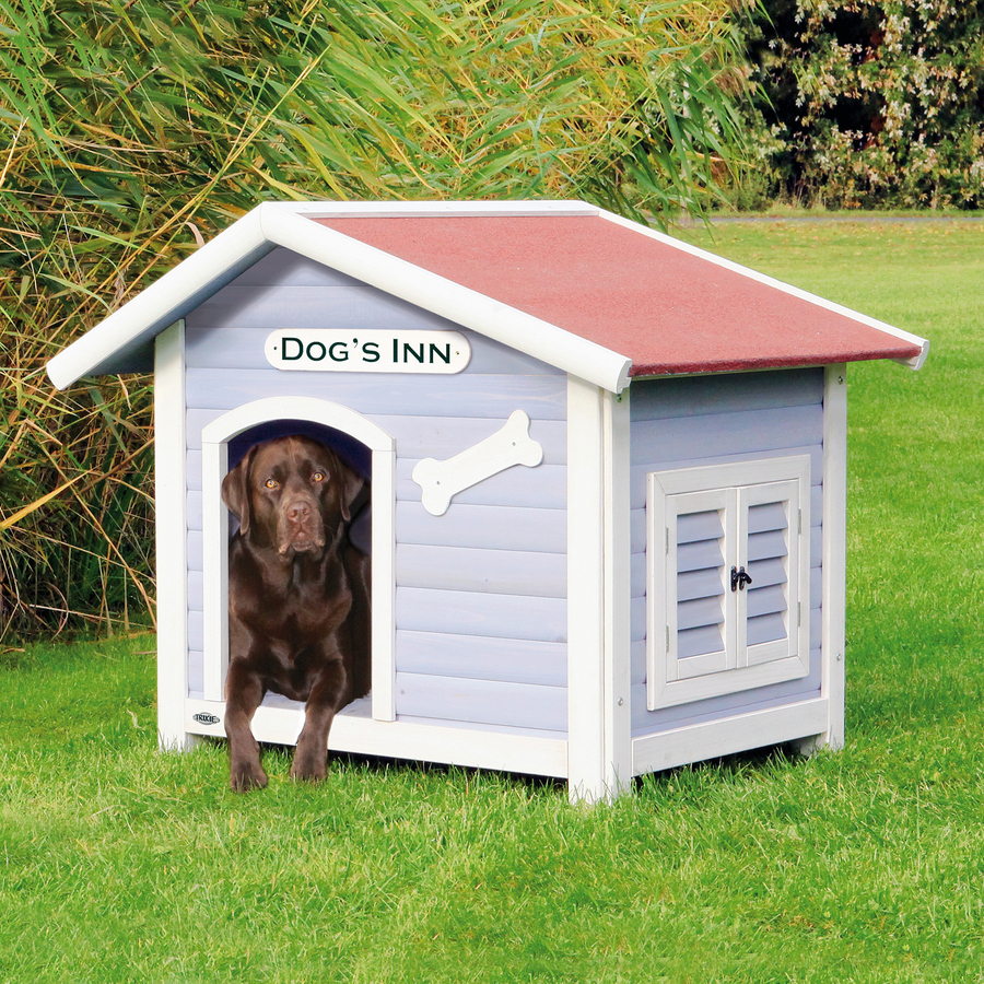 doghouse winter