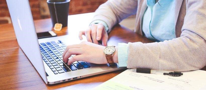 analytical essay writer