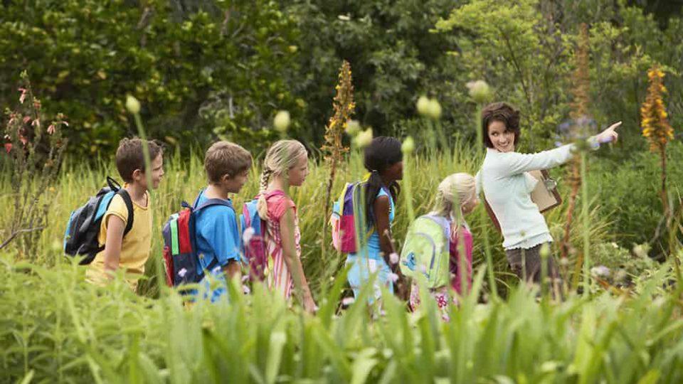 fun-trip-kids-nature