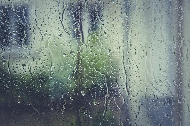 penetrating damp
