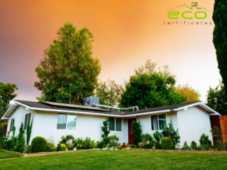 make your home green