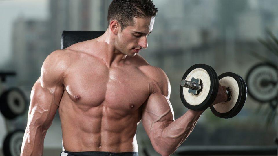 bodybuilding-muscle-plateau