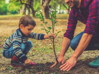 outdoor hobby for kids