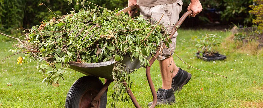 what is yard waste used for